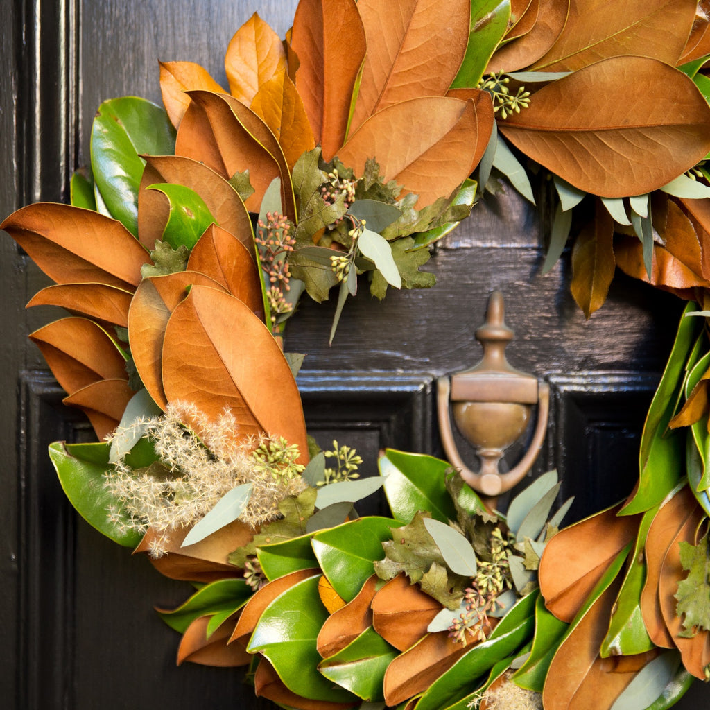 Magnolia and Eucalyptus Wreath | Club Botanic | Door Wreath Magnolia Leaf | Magnolia Door Wreath for Autumn | Magnolia, Eucalyptus and Oak Wreath hanging on a black wooden door | Preserved Green Oak Wreath with Magnolia Leaf and Seeded Eucalyptus