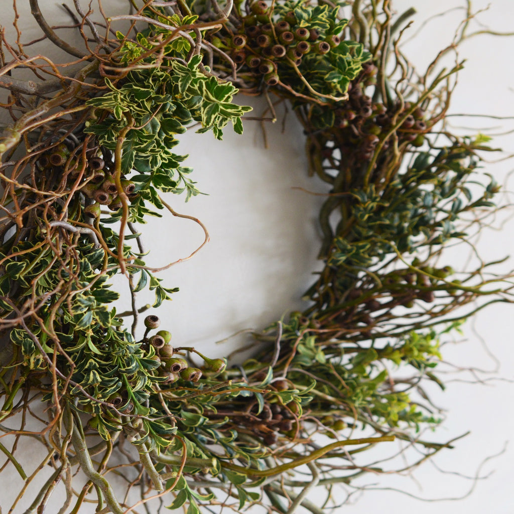 Wreath Curly Willow | English Boxwood Wreath | Twig Wreath | Fresh Wreath | Wreath Fresh
