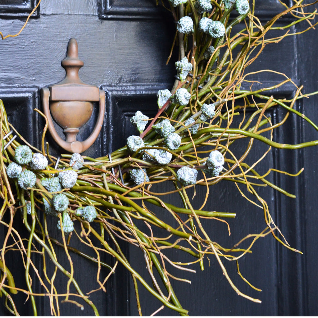 Mt. Tam Blue Eucalyptus Wreath | Club Botanic | Fresh Wreath on Black Front Door made of solid wood | Blue Bell Pod Eucalyptus Wreath | Twig Curly Willow Wreath