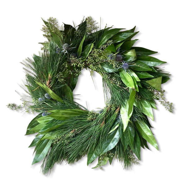 Oakland Colonial Estate Wreath | Club Botanic | Cocculus Wreath | Princess Pine Christmas Wreath | Pine Wreath | Holiday Wreath | Blue Thistle Wreath for Front Door | Sympathy Wreath | Memorial Wreath | Funeral Wreath | Wedding Wreath | Fresh Bay Wreath
