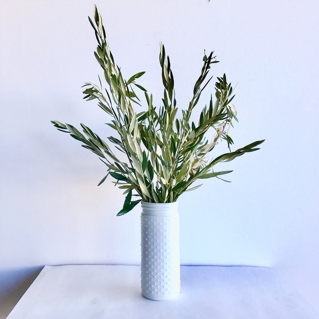 Fresh Olive Branches | Olive Branches in White Vase | Fresh Bunch of Olive | Olive Leaves | Olive Leaf Branch