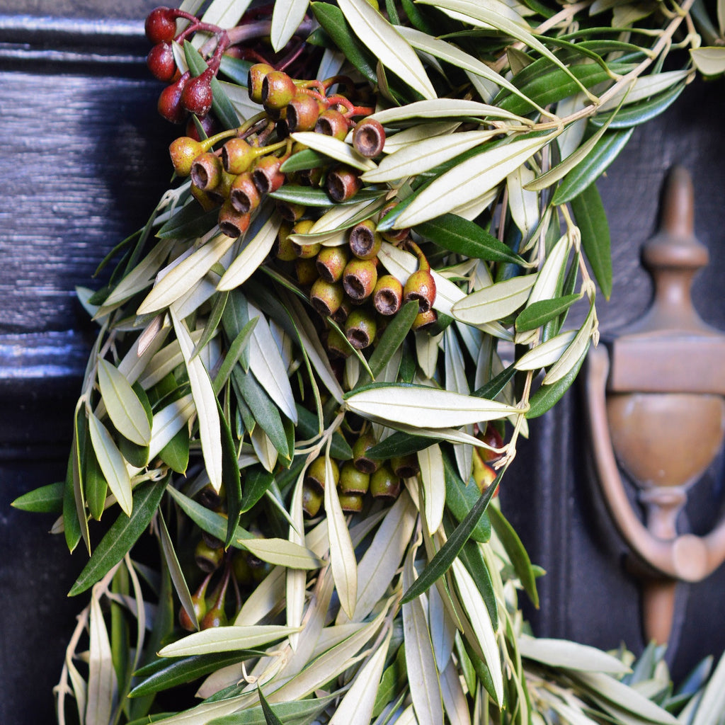 California Olive and Eucalyptus Pod Wreath | Club Botanic | Eucalyptus and Olive Wreath for Autumn | Eucalyptus and Olive Wreath for Fall | Outdoor Wreath Decor for Fall | Indoor Wreath Decor for Fall