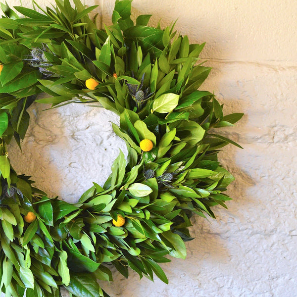 Russian River Bay and Salal Wreath | Fall Door Wreath | Fresh Wreath for Fall | Green Fall Wreath | Yellow Craspedia Wreath | Wreath with Billy Balls | Salal Wreath