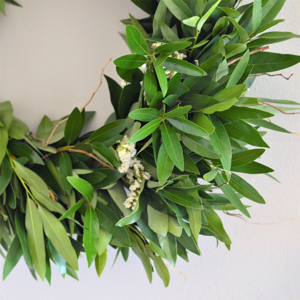 Curly Willow Wreath | Green Bay Leaf Wreath | Outdoor Wreath for Fall | Bay and Statice Wreath | White Statice Wreath | Twig Wreath | Wreath with California Bay Leaves