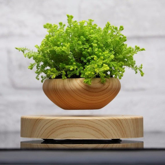 Magnetic Levitation Plant Pot