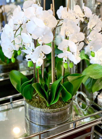 White Orchid Set In Glass Bowl