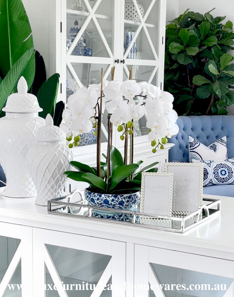 Luxury Orchid In Blue & White Pot - Medium