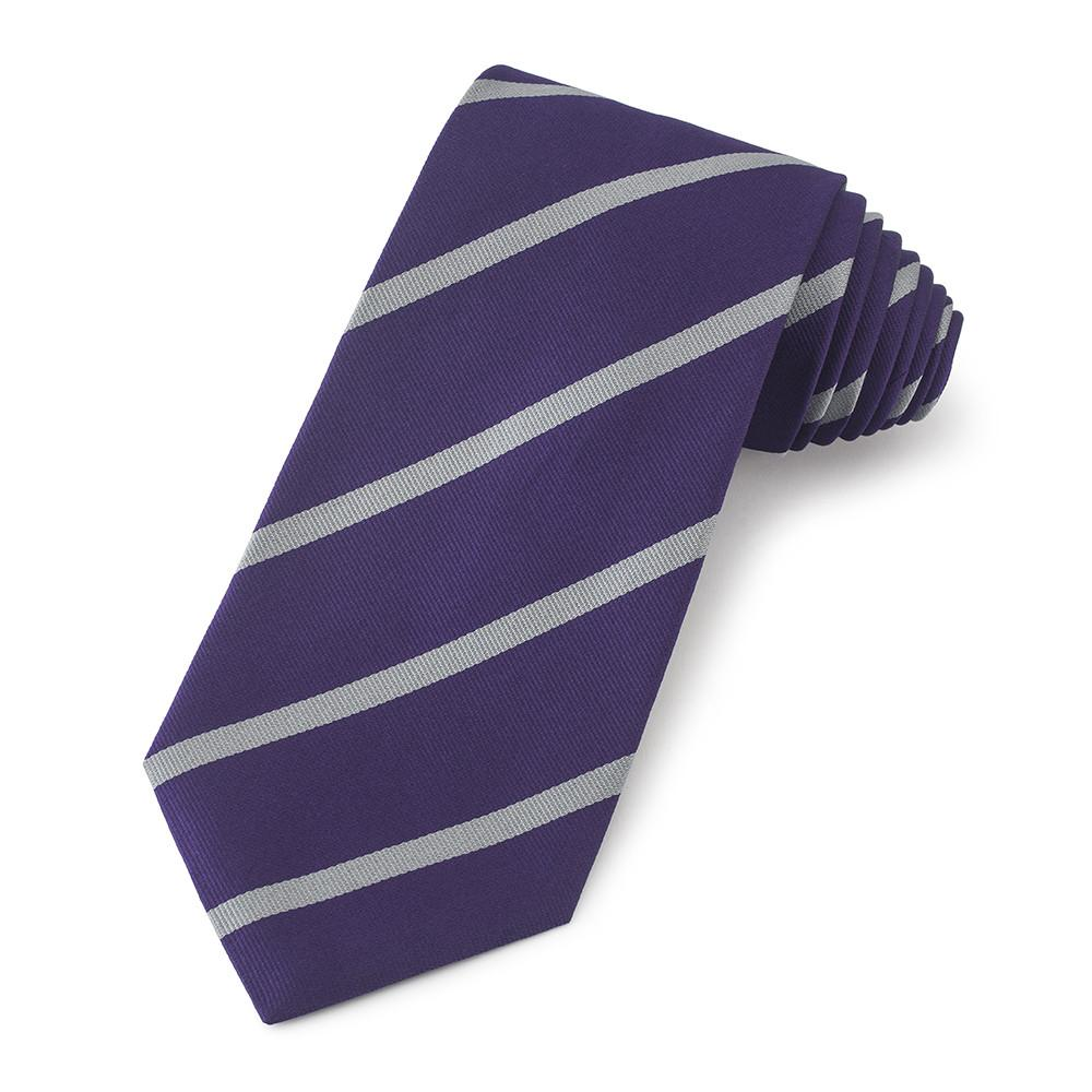 University College London Silk Tie