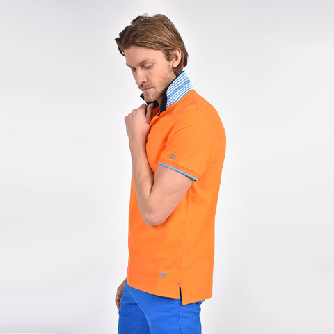 Orange polo with reversible collar.