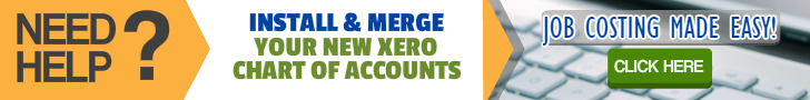 Professional Installation Xero Chart Of Accounts