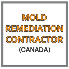 QuickBooks Chart Of Accounts For Mold Remediation Contractor Based In Canada