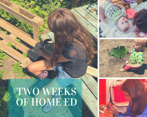 two weeks of home ed