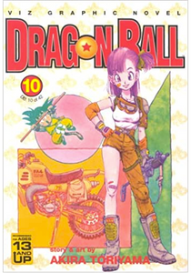 Dragon Ball v.10 (DAMAGED)