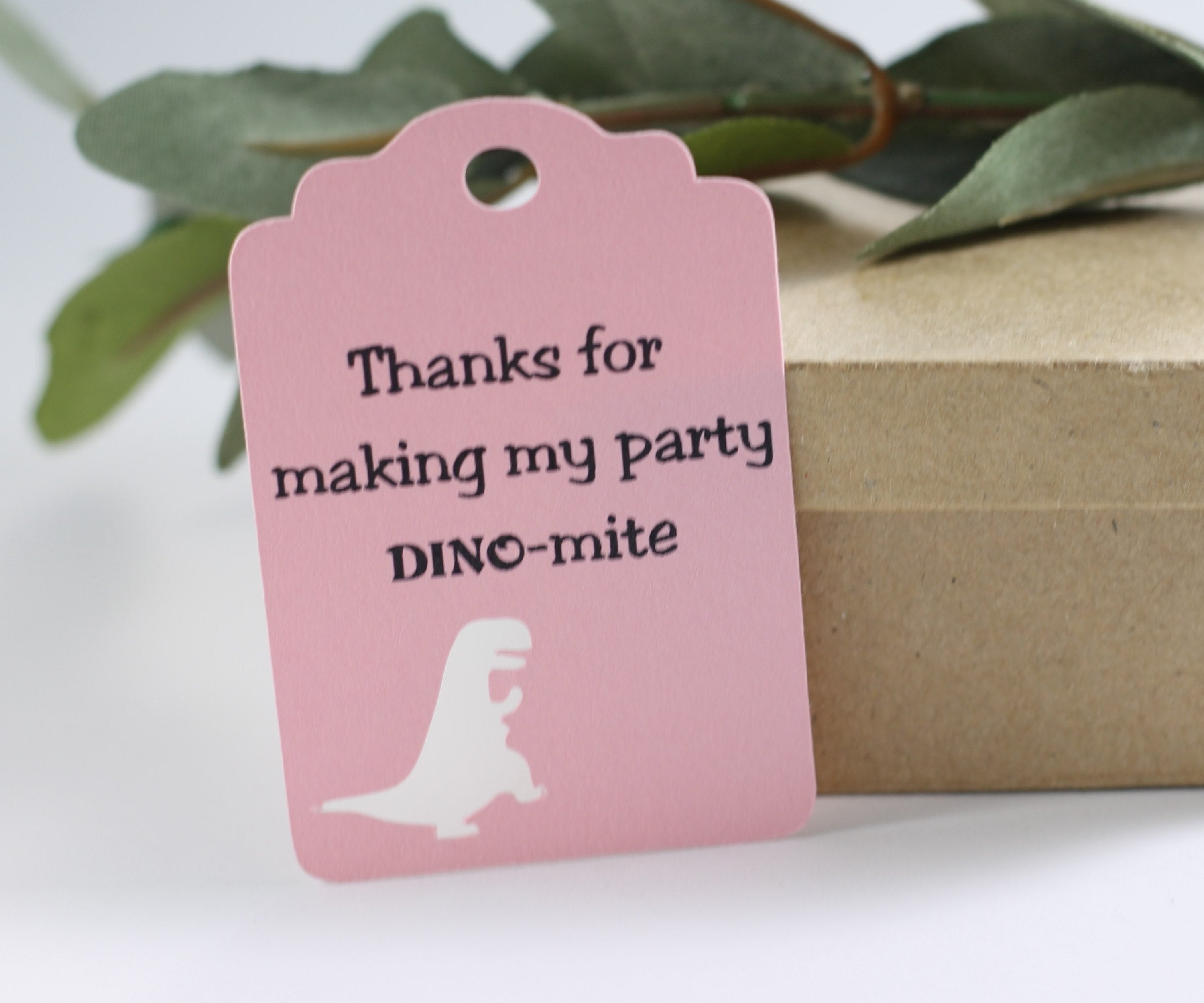 Dinosaur Party Tags for Kids Birthday - Dino Mite in Light Pink - 20pc-Party Tags-The Paper Medley