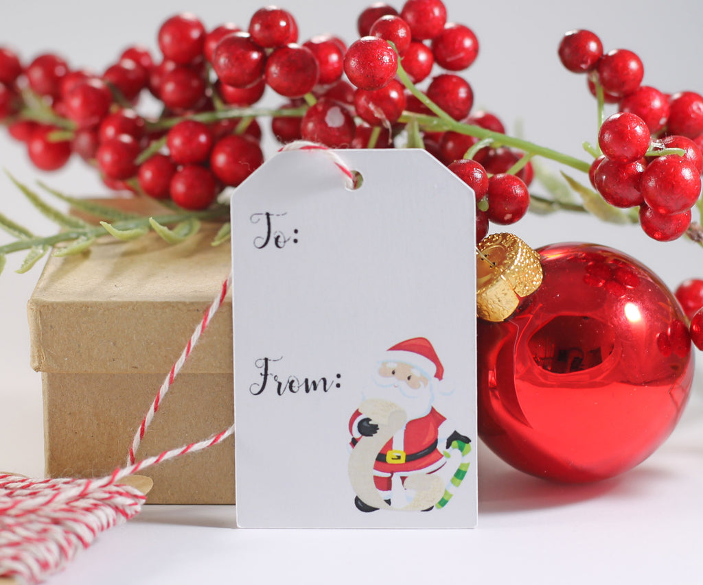 Santa Themed Holiday Gift Tags with To and From 10pc-Christmas Tags-The Paper Medley