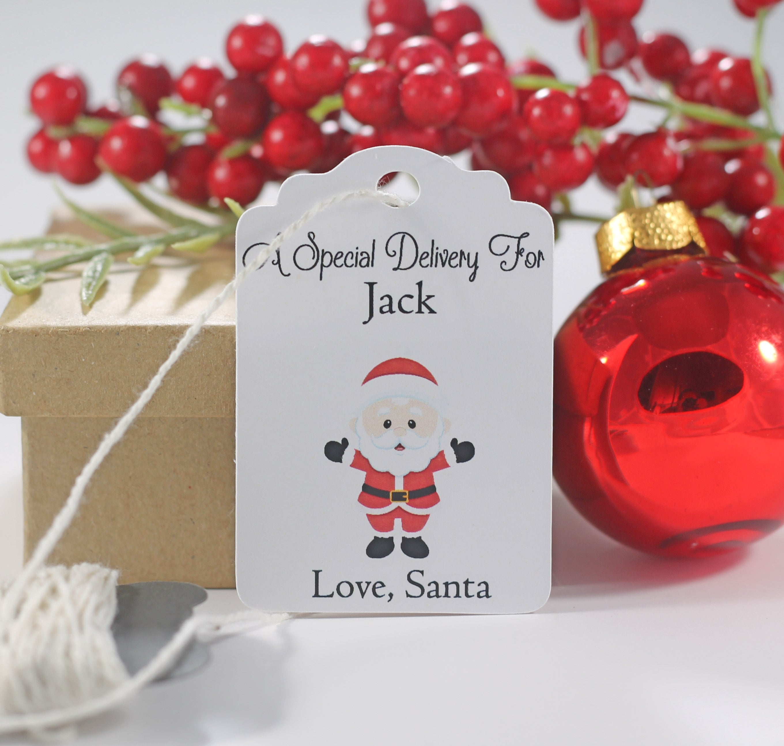 Christmas Tags - Child's Present Labels From Santa Claus 10 pc-Christmas Tags-The Paper Medley