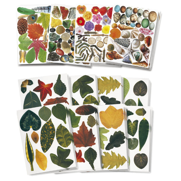 Arts & Crafts Junior Nature Craft Paper & Leaves