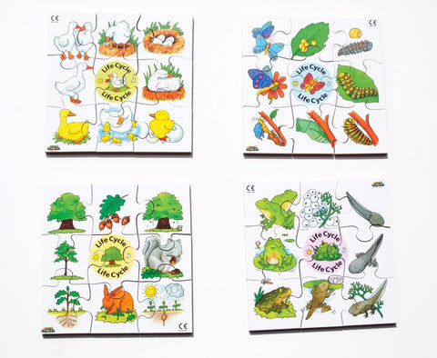 Junior Jigsaw Puzzles - Life Cycle (4 puzzles in one box)