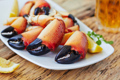 Stone Crab Claws - Groomer's Seafood
