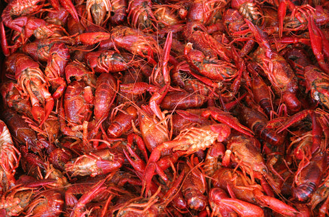5 Pounds- Fresh Boiled Louisiana Crawfish For Pick Up Friday The 31st San Antonio Only!