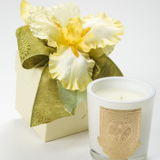 Spring - Citron Candle - 14oz. flower box - Lux Fragrances
