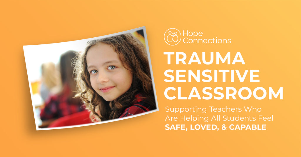 Bundle - Trauma Sensitive Classroom