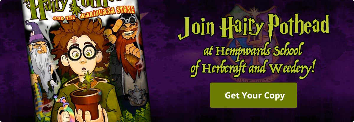 Get your copy of Hairy Pothead and the Marijuana Stone