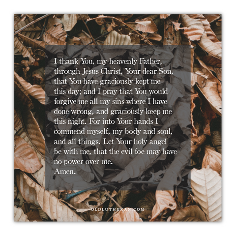 "Luther's Evening Prayer 20"" Canvas"