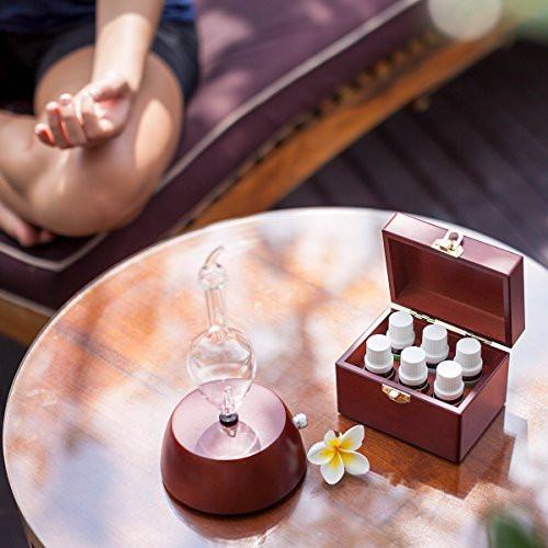 Explorer Aromatherapy Starter Kit By Organic AromasDiffusers,  - Things to Zen About