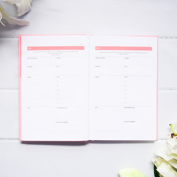 Up & Atem The Happiness Planner 100HP-PINK17 Happiness Planner 100-Day Edition - Pink 1 front cover