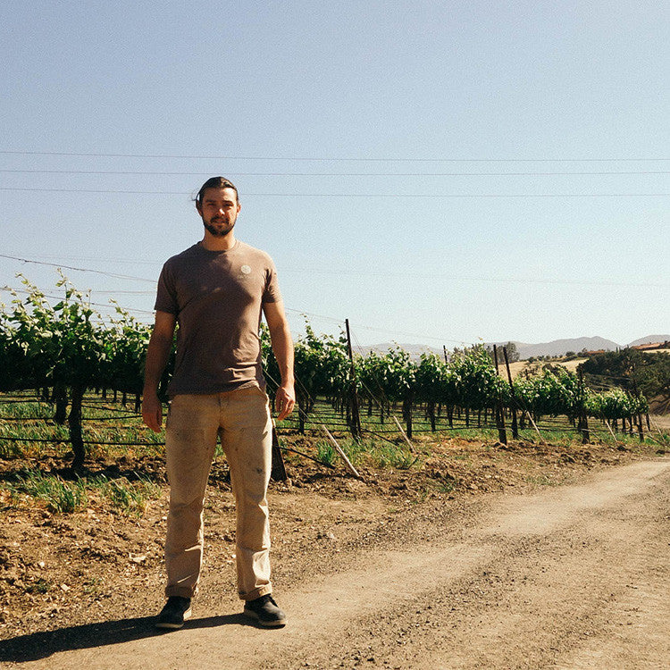 A California Wine Story: Carhartt Vineyards