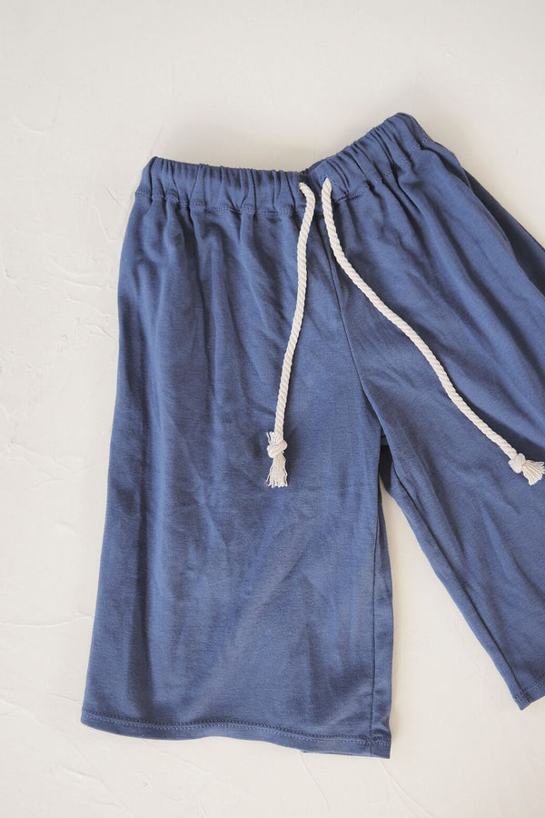 The Ordinary Pant - blue
