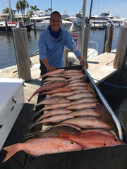 Bahamas Yellowtail and Grouper