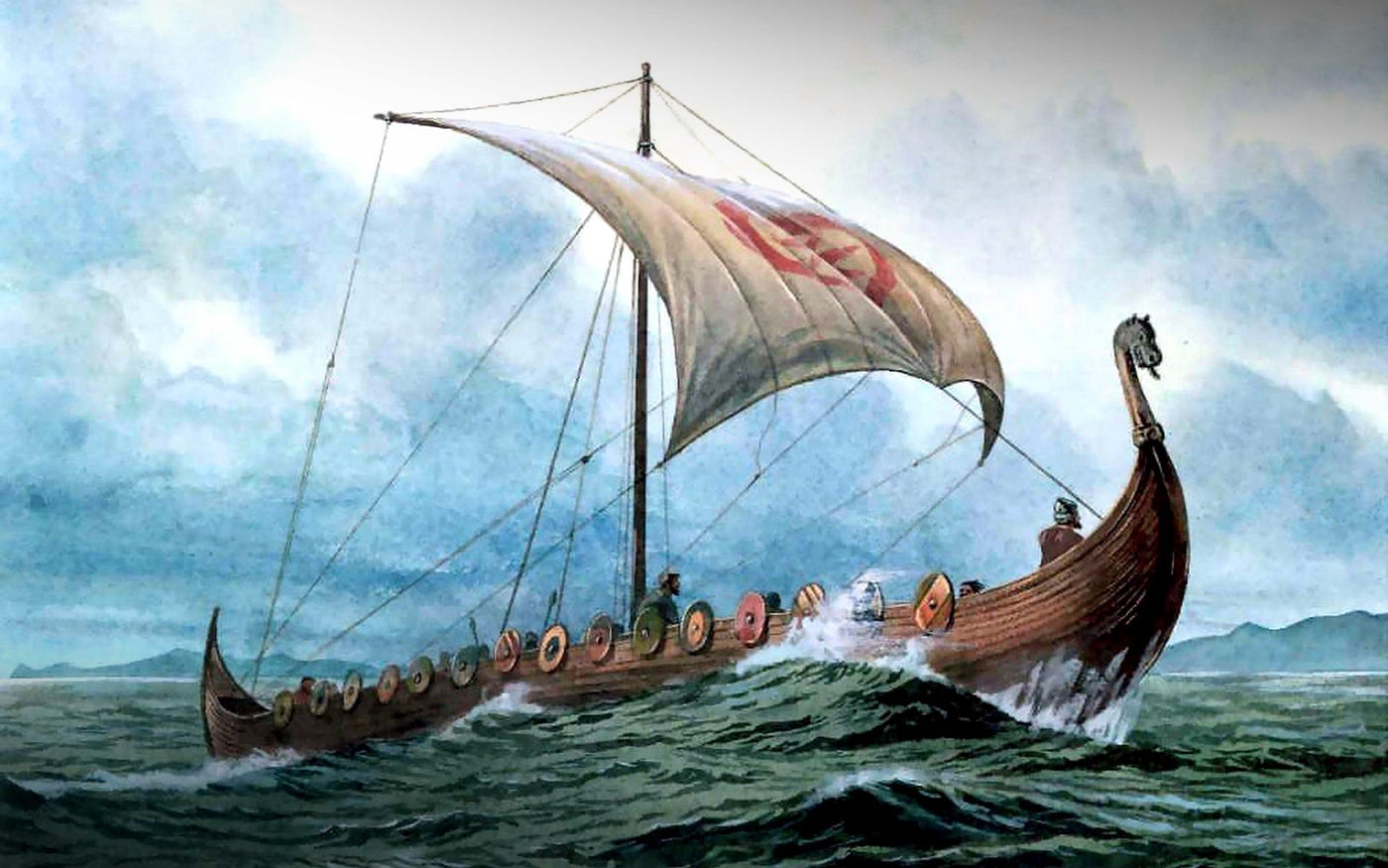 Viking Ships At Sea