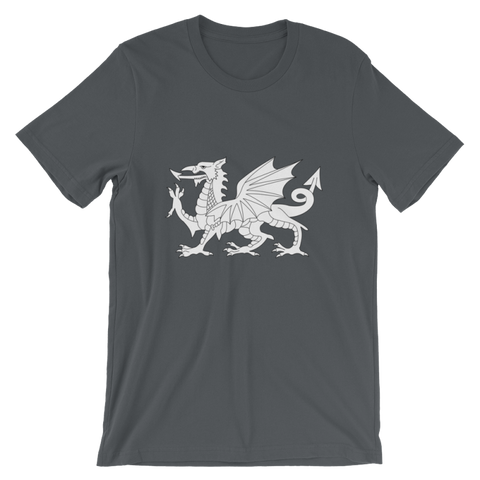 Britannia-Dragon T-Shirt - Asphalt / S - Apparel T-Shirts