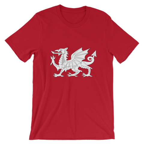Image of Britannia-Dragon T-Shirt - Red / S - Apparel T-Shirts