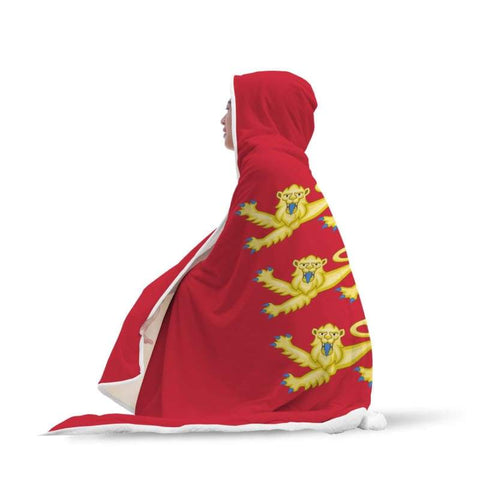 King Richard Hooded Blanket - Hooded Blanket Blankets Hooded Blankets
