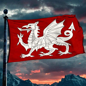 White Dragon Flag - Flags Banners & Accessories Flag Flags