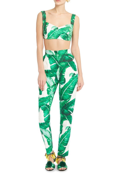 Front view of Dolce and Gabbana palm leaf print crop top and matching full length high waisted pants.