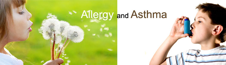 What Is The Difference Between Asthma And Allergies?