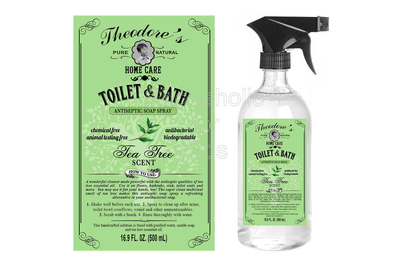Theodore's Home Care Toilet and Bath Antiseptic Soap Spray - Shopaholic for Kids