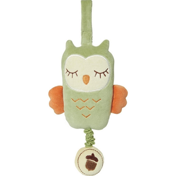 Musical Pull Toy Green Owl