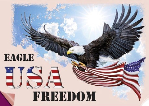 USA Freedom Eagle Strijk Applicatie