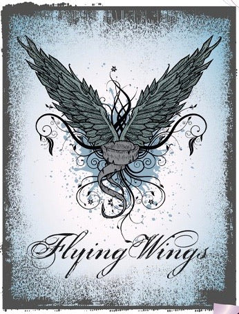 Flying Wings Tekst Strijk Applicatie