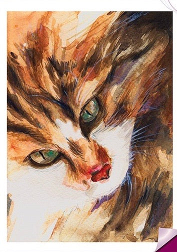 Aquarel Poes Strijk Applicatie