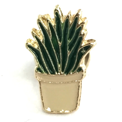 Vet Plant Catus In Bloem Pot Pin