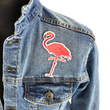 close up van een Glanzend Roze Flamingo Op Een Poot Patch