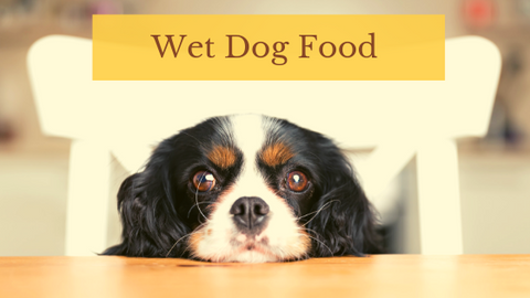 Judge's Choice Wet Dog Food