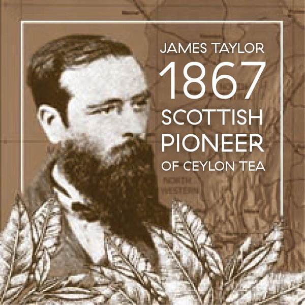 James Taylor pioneer of Ceylon tea