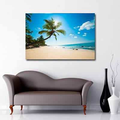 Palm Tree By The Beach Art Canvas